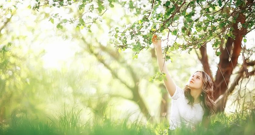 5 huiles essentielles indispensables au printemps