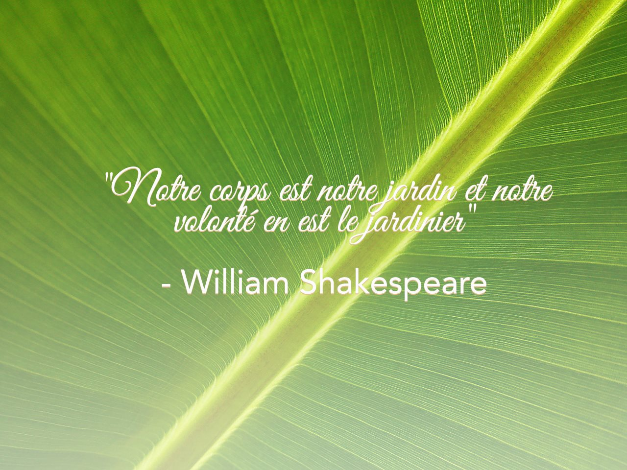 Notre citation de la semaine......