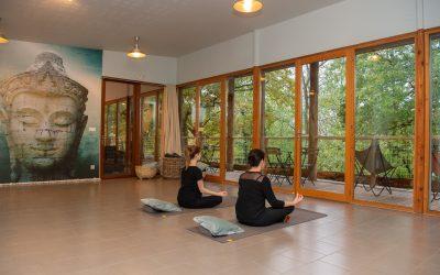 Chemin de l'éveil Zain & Zen