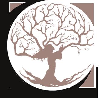 logo_cdle_ok